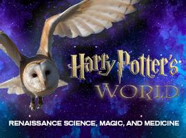 Harry Potter's World