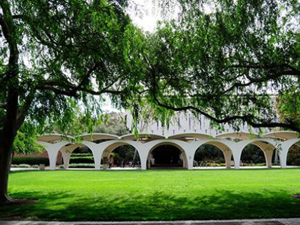 Rivera Library arches