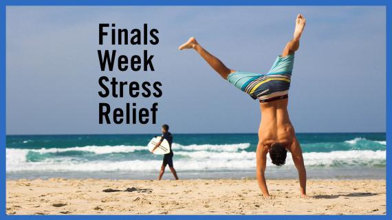 Finals Week Stress Relief Spring Quarter 2017