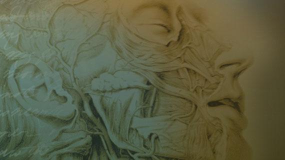 "Traveling exhibition, ""Frankenstein: Penetrating the Secrets of Nature."""